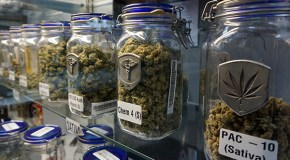 Defunct cannabis shop faces another lawsuit from creditors