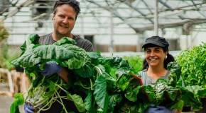 Growers take ownership of their greenhouse – no, not that kind