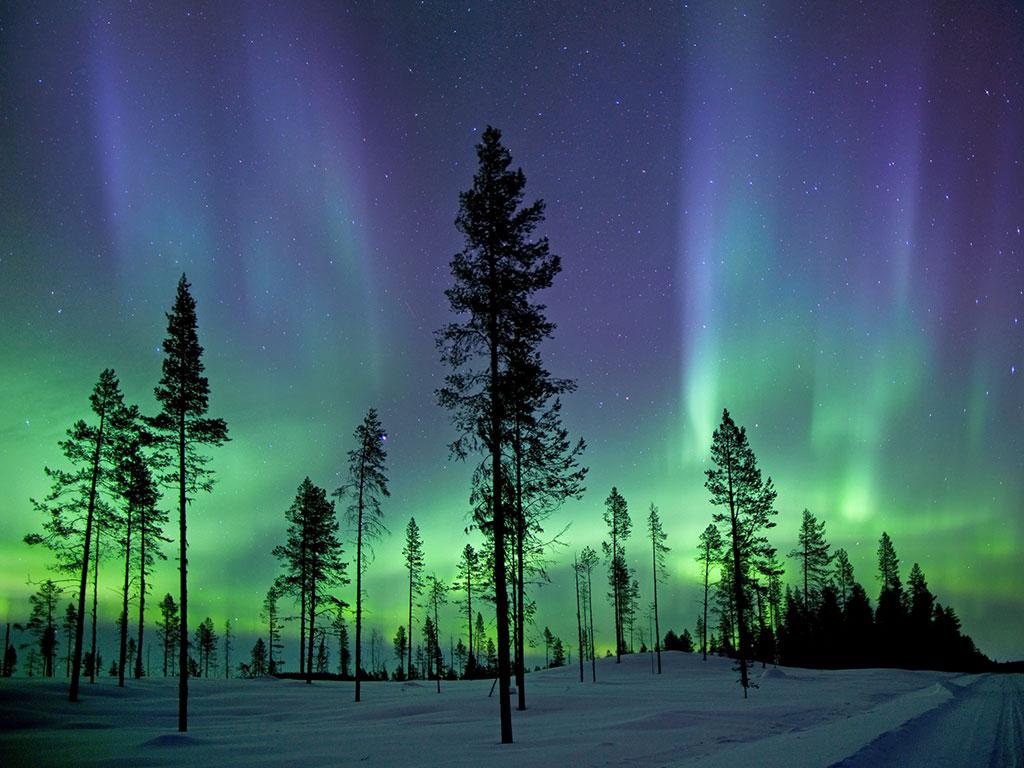 Northern Lights Down Blanket