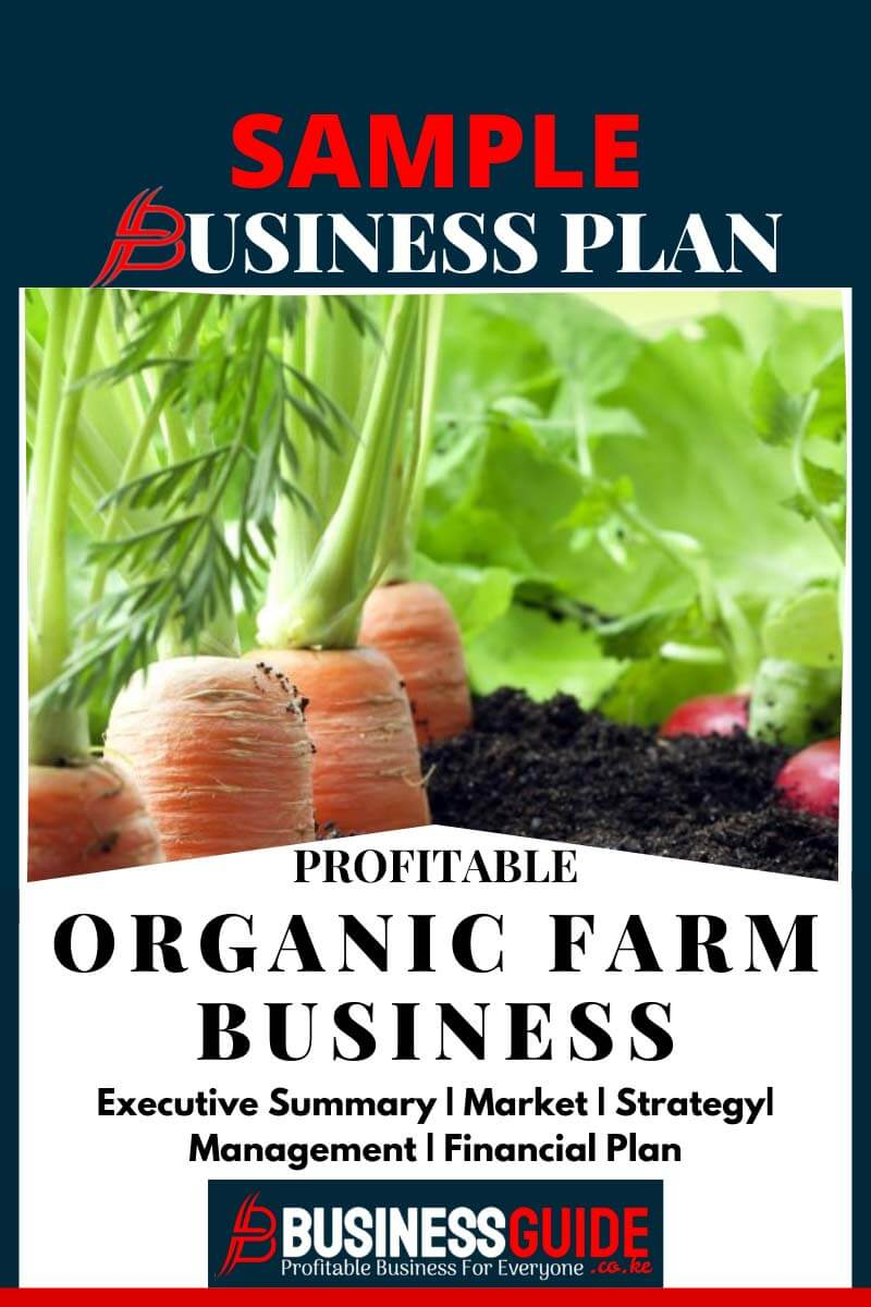 organic farming business plan sample