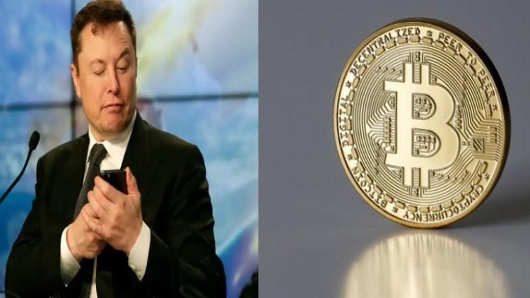 Bitcoin Elong Musk