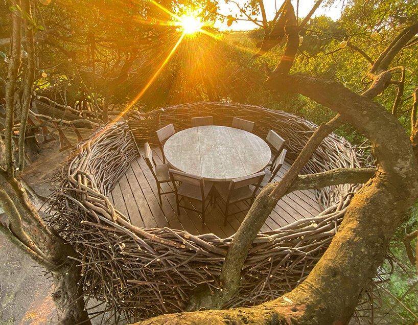 charlie baker nests