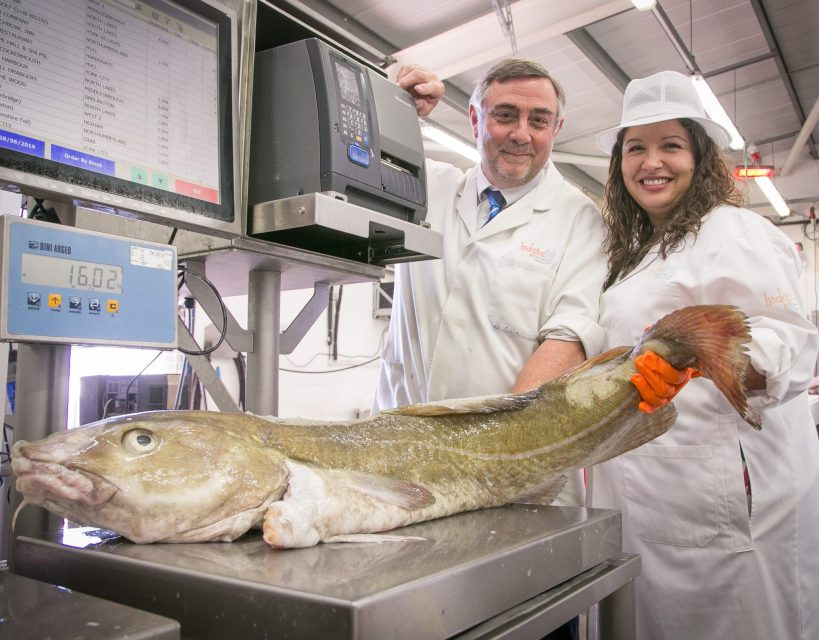 Fish merchants looking to net future growth after securing £28,000 grant