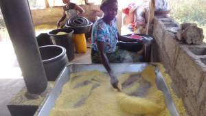 cassava farming garri production