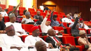 Senate Cautions Fashola Over Comments on 2017 Budget