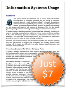 information systems, social media,policy,employee, handbook, manual, software template, online