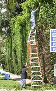 osha safety training manual handbook software template online ladder