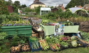 Veg contributed by growers at North Stapenhill Allotments' open day, which raised £800 for the local air ambulance