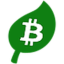 Bitcoin Green logo