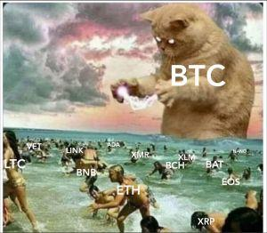 The Cryptocurrency's Tale: 20 Crypto Jokes 101