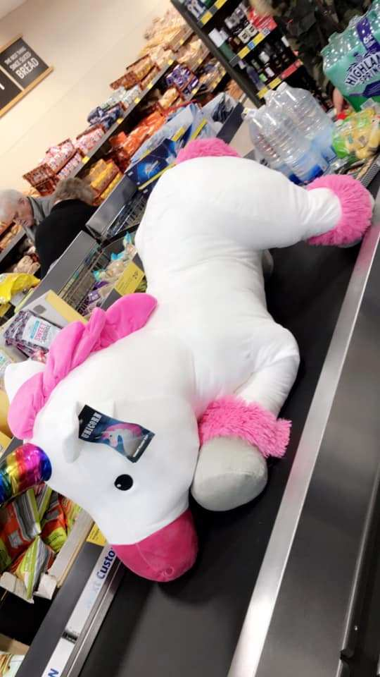 One Aldi shopper snapped up this giant toy unicorn for just 99p