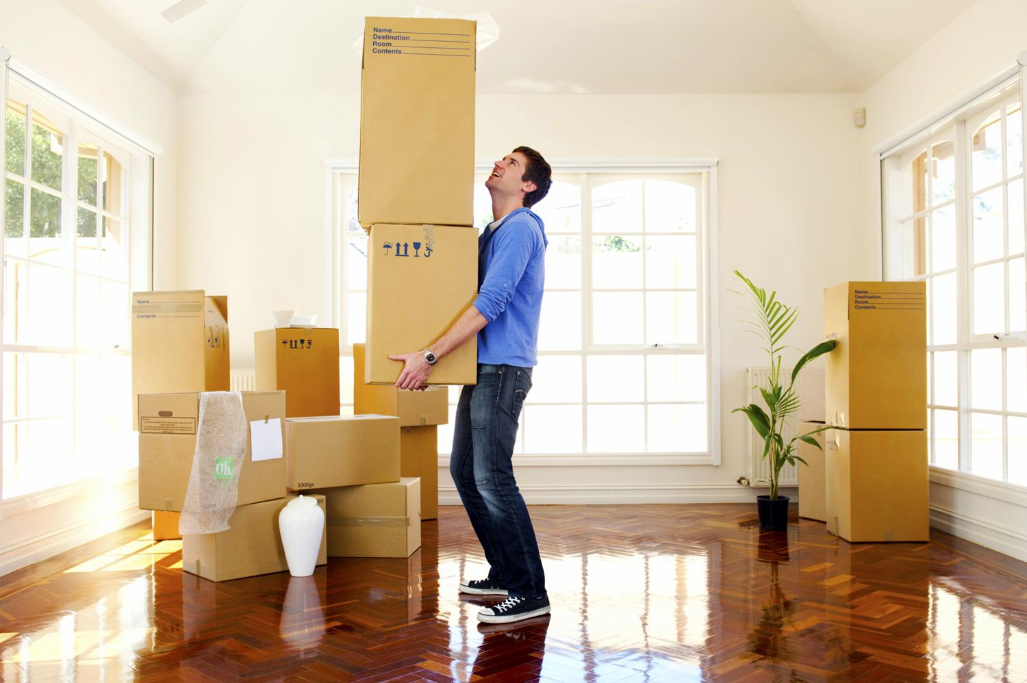 Best Movers in Fort Lauderdale - Business Telegraph