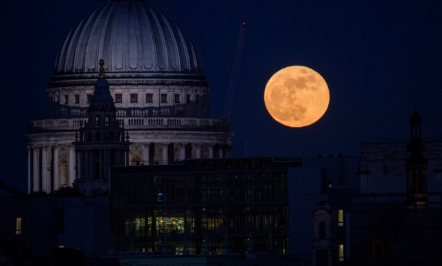 A supermoon rises behind St. Paul's Cathedral in London (Chris J Ratcliffe/Getty Images)
