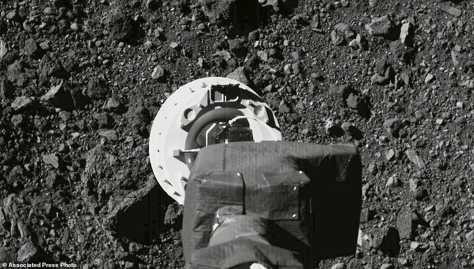 The 11ft sampling arm of the OSIRIS-REx spacecraft (pictured) took samples of rock and soil from Bennu during landing. A NASA image of the sampling arm above in August 2020 during a rehearsal for approach to the Nightingale sample site