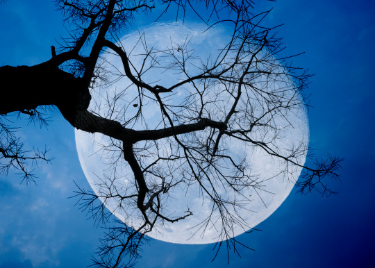 A 'blue moon', often used to denote rarity, isn't all that unusual. (Photo: Getty)