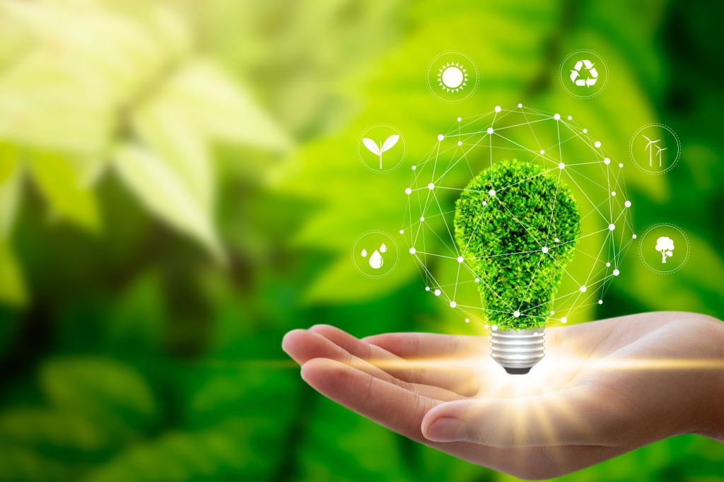 Why Sustainability is the Future for All Business