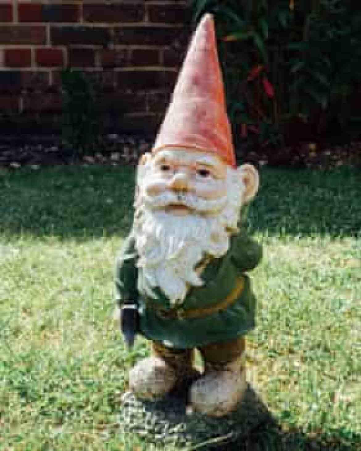 A gnome in a back garden.
