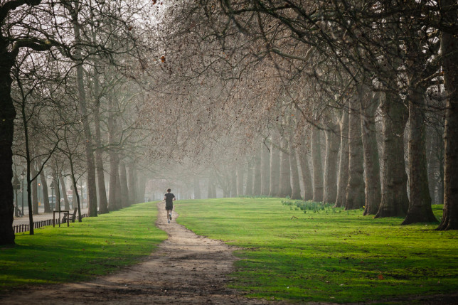 Man trail running in Hyde Park, London
