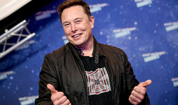Musk could help spur it to new heights