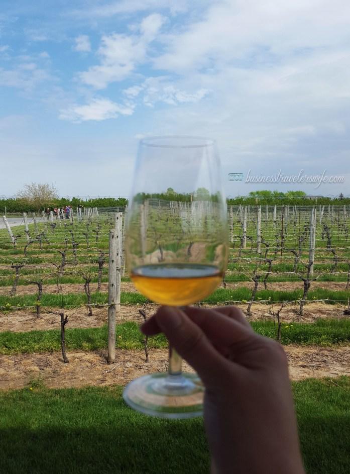 Winery Tour at Niagara-on-the-lake Trius Vidal Icewine