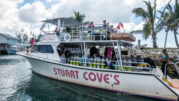 Amazing Snorkeling Tour with Stuart Cove's Dive Bahamas Scuba Diving