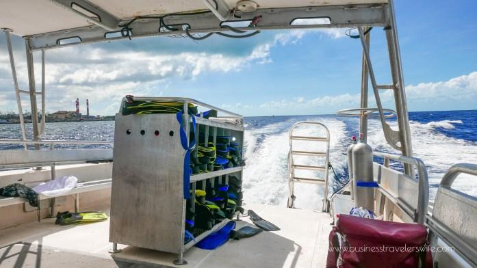 Amazing Snorkeling Tour with Stuart Cove's Dive Bahamas Snorkeling Gear Fins