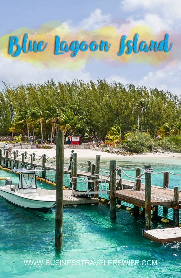 VIP Beach Day and Dolphin Encounter on Blue Lagoon Island