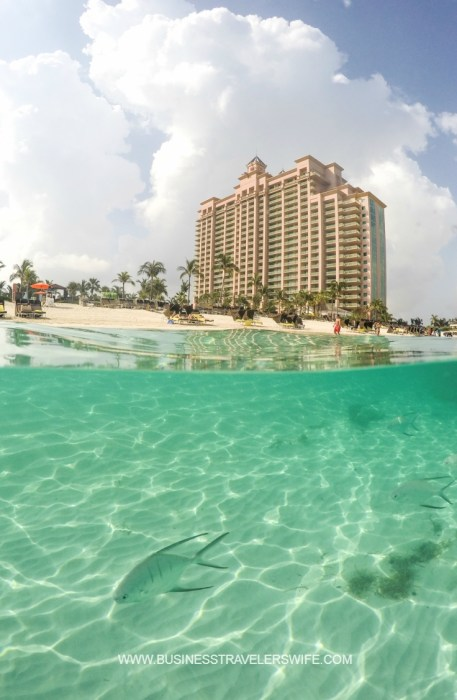 Pinterest The Cove Atlantis - Autograph Collection at Paradise Island, Bahamas