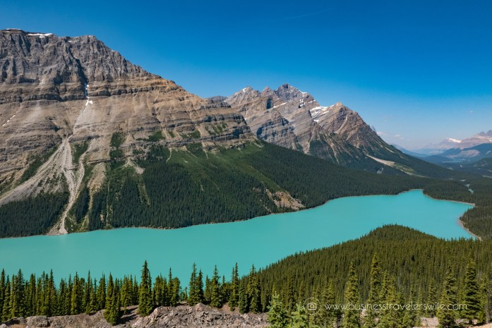 Flipboard Scenic Summer Roadtrip to the Canadian Rockies Peyto Lake (1 of 1)-2