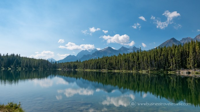 Scenic Summer Roadtrip to the Canadian Rockies Herbert Lake