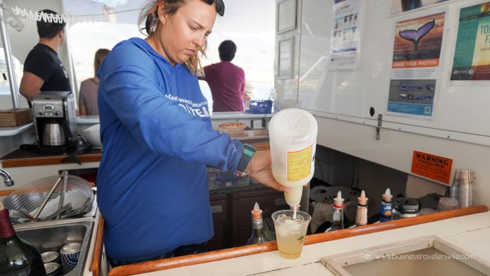 10 Things to Know Before You Go Whale Watching in Maui Hawaii Whalewatch Sail Deluxe Tour Pacific Whale Foundation drinks