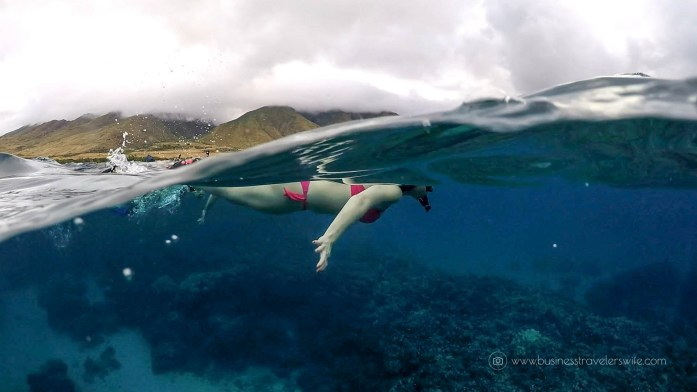 Photo Credit: Curtis of Maui Kayak Adventures