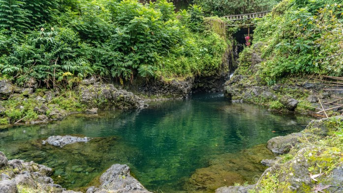 10 Memorable Stops on the Road to Hana for A Self-Drive Tour Maui, Hawaii Ching's Pond