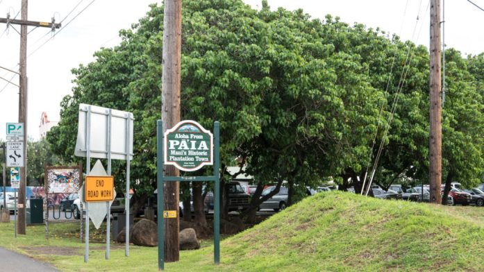 10 Memorable Stops on the Road to Hana for A Self-Drive Tour Wailua Falls Maui, Hawaii Paia