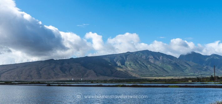 FI Visiting Haleakala Crater, Iao Valley and Other Interesting Stops in Maui Valley Isle Excursions Tour Kealia Iao Valley
