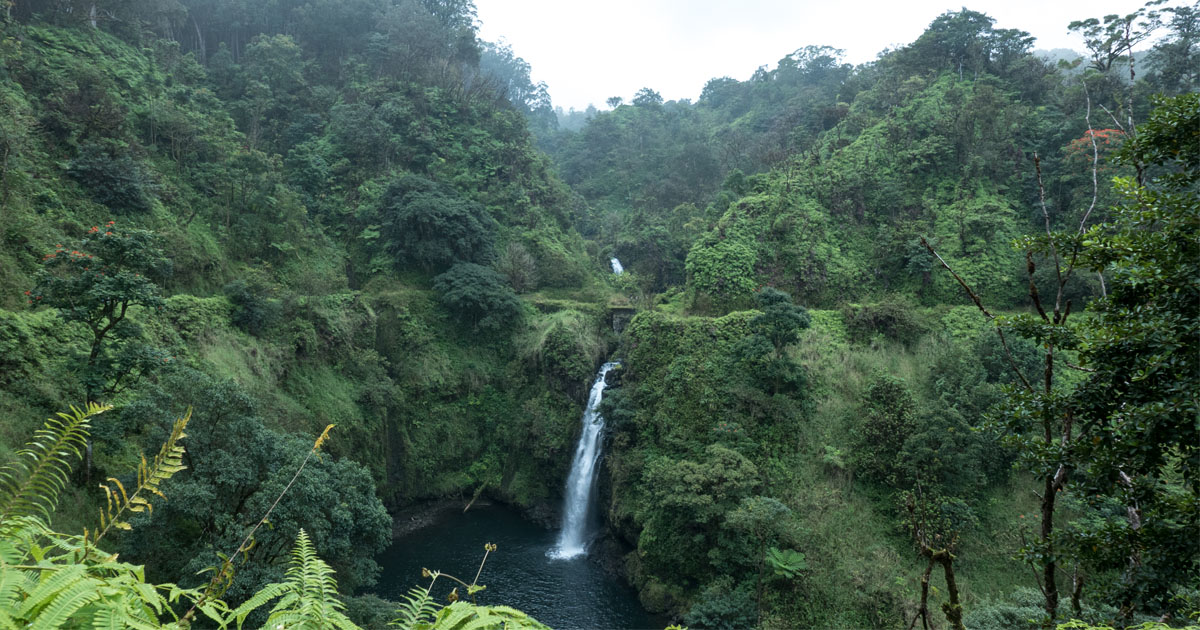 road to hana self guided tour free download