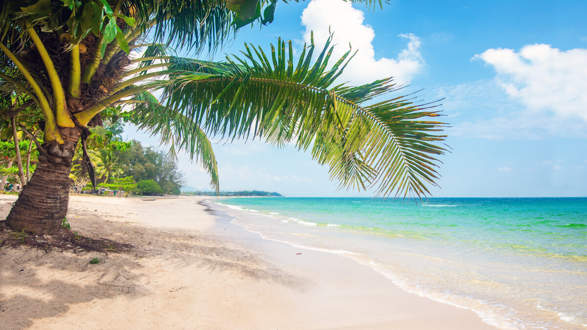 top-5-beaches-in-the-world
