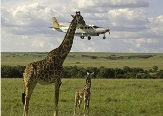 Tanzania's tourism is facing a pricing crisis causing the frustration of a multi-billion-dollar industry that wants to grow by leaps and bounds.