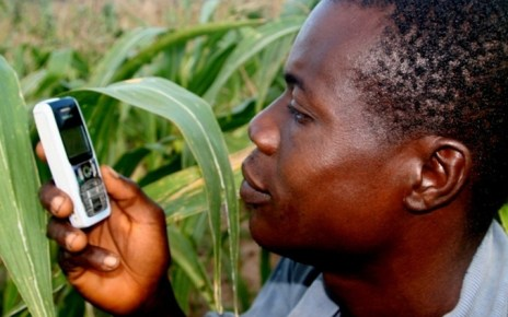 A new report from Wefarm one of the world largest farmer to farmer digital network indicates that 1.1 Million farmers both in Uganda and Kenya are embracing