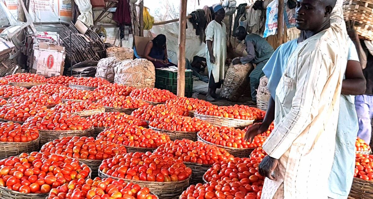 Estimates by the Economic Commission for Africa indicate that African Continental Free Trade Area has the potential to boost intra-African trade by eliminating import duties, and double trade – if non-tariff barriers are also reduced.