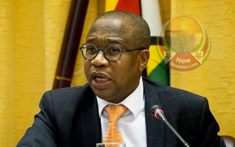 Ncube said adopting the U.S. dollar or the South African rand would not solve the country's macro-economic problems.