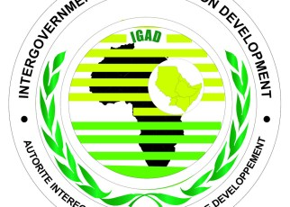The IGAD initiative aims to develop a common position to boost security and economic interests in the region.