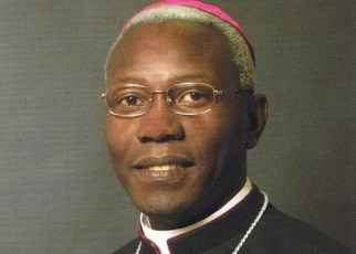 Pope Francis has appointed the Tanzanian born prelate, Archbishop Novatus Rugambwa, as Apostolic Nuncio to New Zealand and Apostolic Delegate to the countries of the Pacific Ocean.