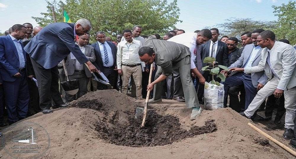 Ethiopia has inarguably taken the lead in the implementation of Climate-Resilient Green Economy to protect itself from the adverse effects of climate change with significant resources being deployed towards reducing Greenhouse Gas (GHG) emissions.