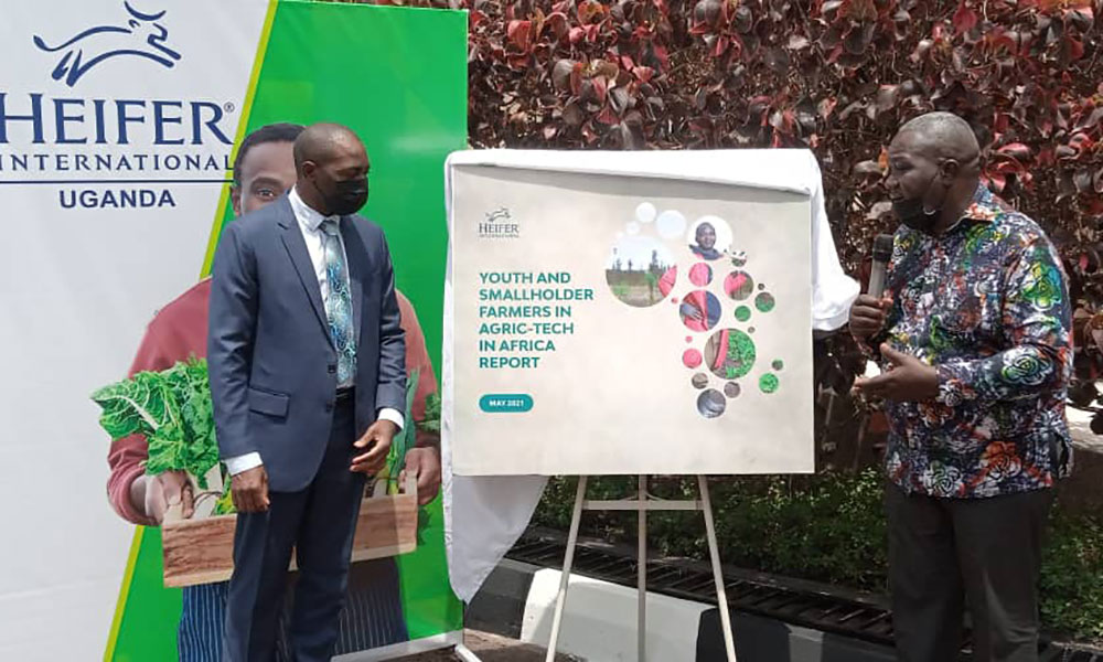 The Future of Africa's Agriculture-Youth and Tech