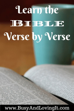 Learn the Bible verse by verse. Great for your home, car, or office.