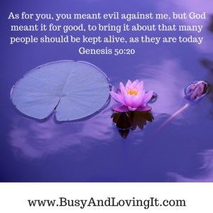 What you meant for evil, God meant for good. No one was stopping God's plans