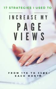blog-traffic-ebook-monthly-page-views