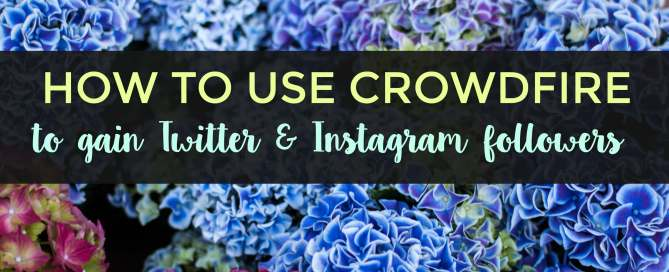 Use Crowdfire to gain Twitter and Instagram followers.