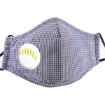 Reusable Face Mask Antibacterial Virus Protection Mask - Blue Checkered